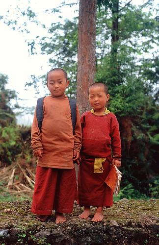 Little monks - Portrait I