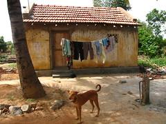 Untouchable village III by Mira John
