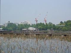 Ueno Park 4