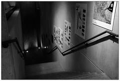 Depths: Stairwell at EIT