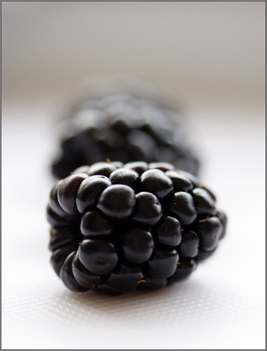 Black is B</p> <p>cassis - blackcurrant - schwarze johanisbeeren</p> <p><a title=