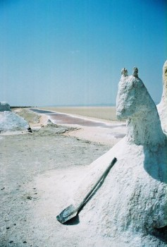 Horse Sculpture crafted by Tunisian Salt workers in the Sahara