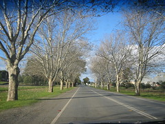 Travelling through NSW