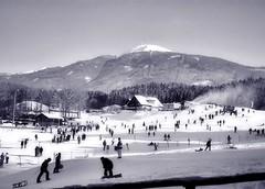Innsbruck bunny slope