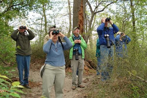 Cattaraugus County Bird Club