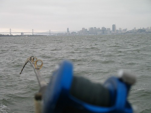 San Francisco halibut trolling