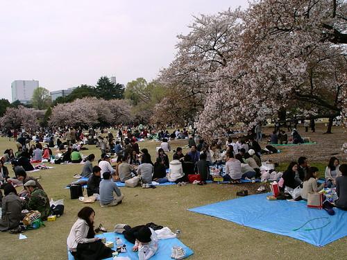 Aurtengo Hanabi luzea (shinjuku park)
