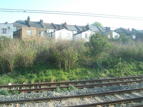 Approaching Willesden Junction
