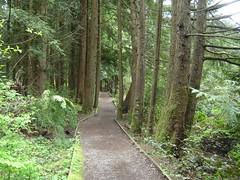 Mundy Park walking trail