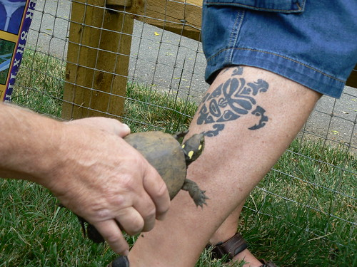 Chuck Vandervort's turtle tattoo… and an actual turtle