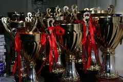 Gluten Free Trophy Giveaway