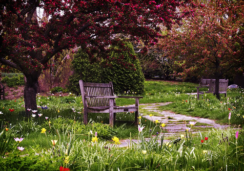 Olbrich Gardens Spring Afternoon, by WisDoc