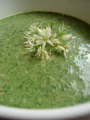 Spinach and Wild Garlic Pesto Soup
