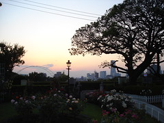 Yokohama (47)
