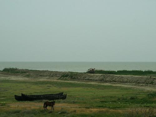 Lacul Razim