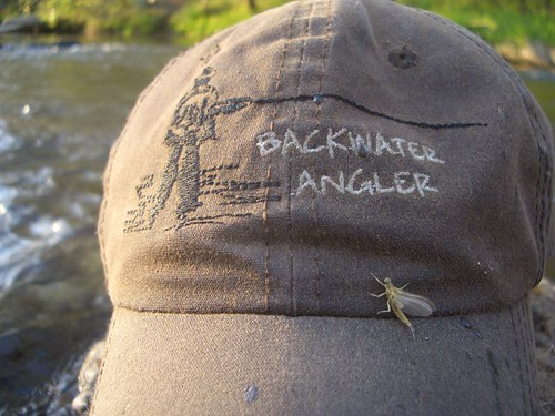 Backwater Angler Hat