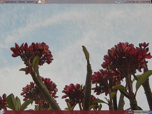 ubuntudesktop