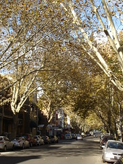 Potts Point (10)