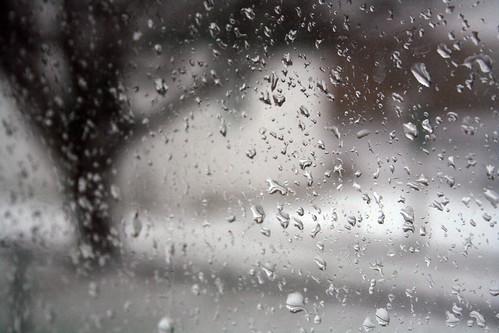 Bus en regen