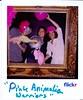 Pink Animalia Warriors II