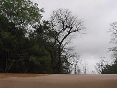 Kollibacchalu Dam -Malenadu Heavy Rain Effects Photography By Chinmaya M.Rao   (54)