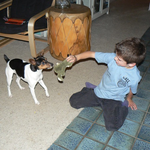Gage and Ruby playing with froggie