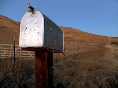 Mailbox by mrjoro, on Flickr