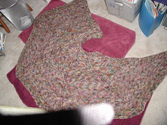 Shawl (with unknown item blocking view at bottom)