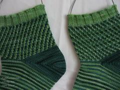 elodea finished pattern detail