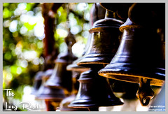Series of Bells hung in temple