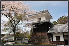 Iwamura Castle, Gifu