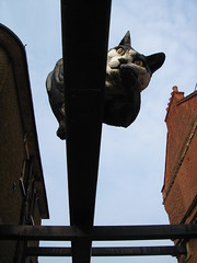 The Catford Kitty