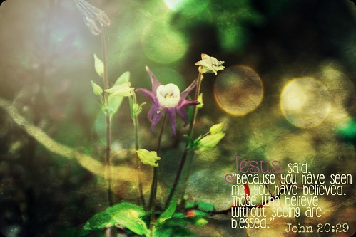 """Bible Verse Photo Art • <a style=""""font-size:0.8em;"""" href=""""http://www.flickr.com/photos/95703371@N00/18376134689/"""" target=""""_blank"""">View on Flickr</a>"""