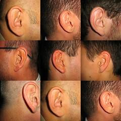All Ears...