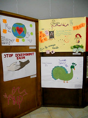 Pictures made by Participants