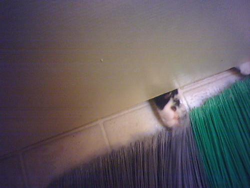 Helping Mom sweep the bathroom