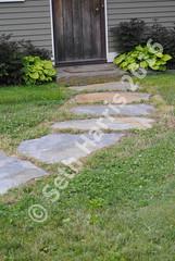 seth-harris-path-2