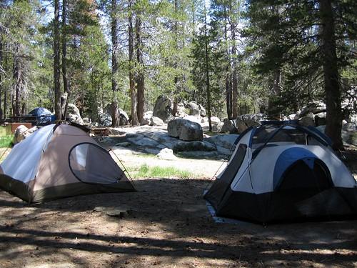 green camping