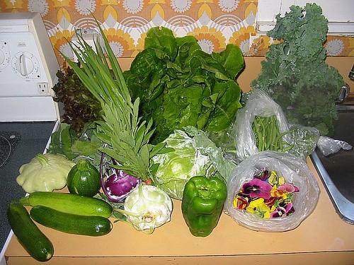 ผู้บริโภค กับผลิตภัณฑ์เกษตรอินทรีย์ Gemüsekiste / Organic vegetable