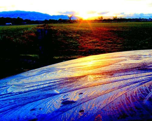 sunrise car reflection