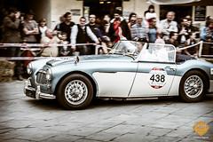 PetraSagnak_classiccar-photo.de-2-4