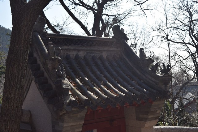 LapShanTaiqing00038