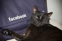 Facebook Model