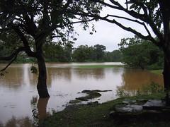 Kollibacchalu Dam -Malenadu Heavy Rain Effects Photography By Chinmaya M.Rao   (127)