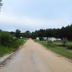 The Road Ahead. Day 70. Old Glenwood Rd in Glenwood, GA. Another day of cool weather in rural Georgia. #TheWorldWalk #travel #Georgia #wwtheroadahead