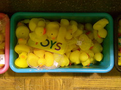 Toy Ducks