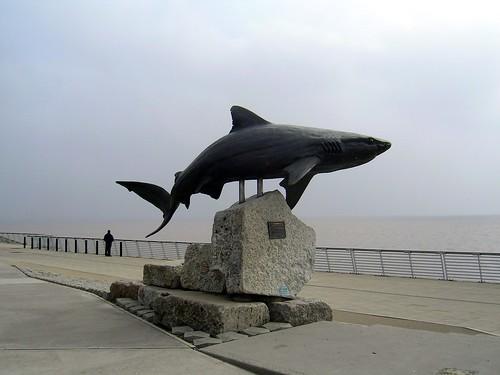 Shark Statue