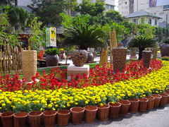 Nguyen Hue Flower Market 2006