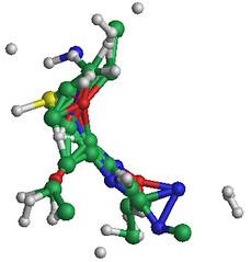Molecule Mutant