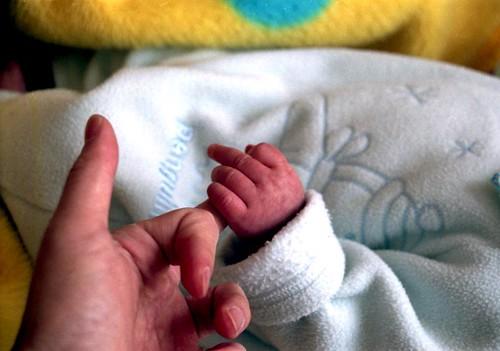 tiny shake-hands